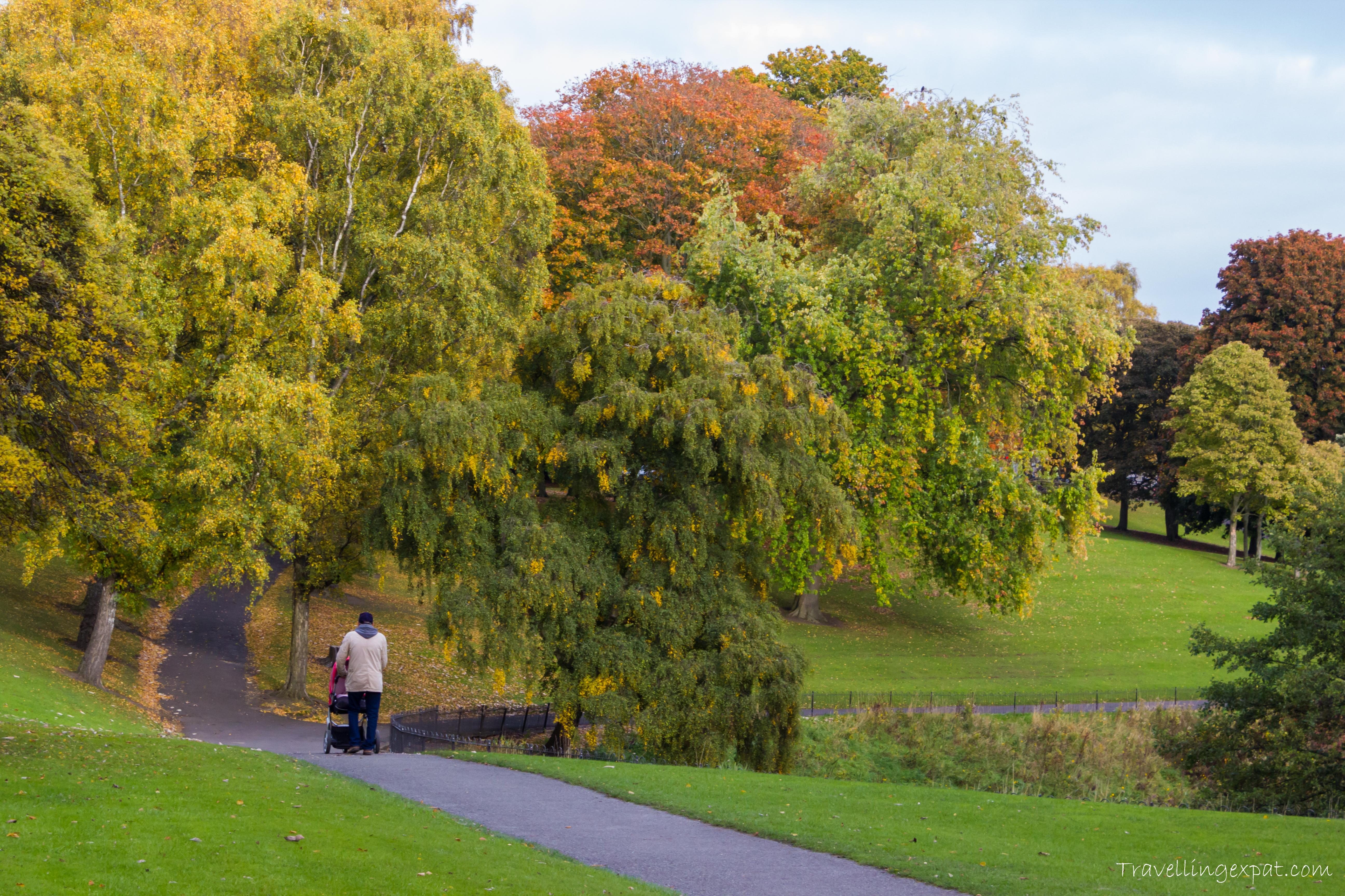 Phoenix Park d'autunno